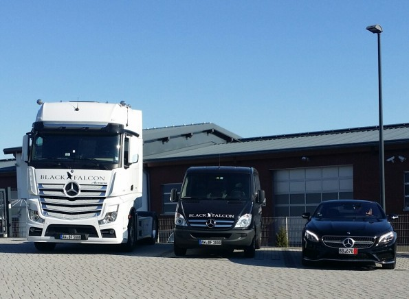 Mercedes European Delivery Program